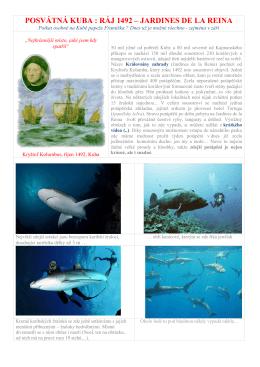 Potápěčské safari Jardines de la Reina v září