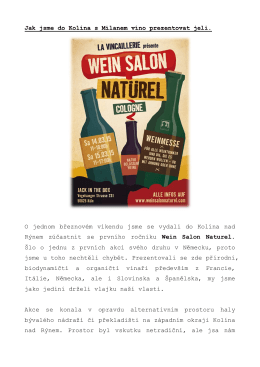 Wein Salon Naturel