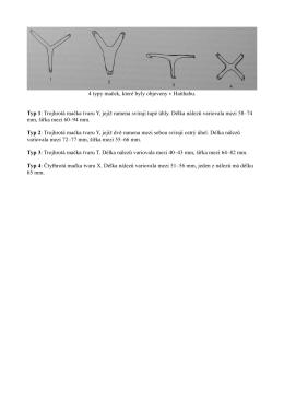4 typy maček, které byly objeveny v Haithabu. Typ 1: Trojhrotá