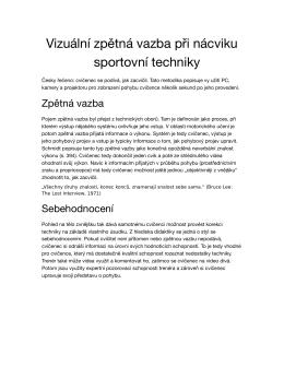 Vizuální zpětná vazba při nácviku sportovní techniky (pdf ke stažení)