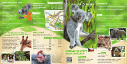 Informační brožurka v češtině