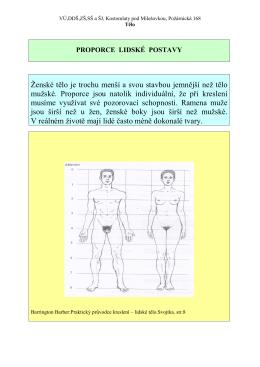 Ženské tělo je trochu menší a svou stavbou jemnější než tělo