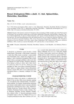 Žihle a okolí. 11 . část. Sphaeritidae, Histeridae, Dascillidae