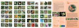 Motýli Bítešska (formát PDF, 786 kB)