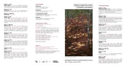 Otevřít obrázek na nové kartě - Galerie moderního umění v Roudnici