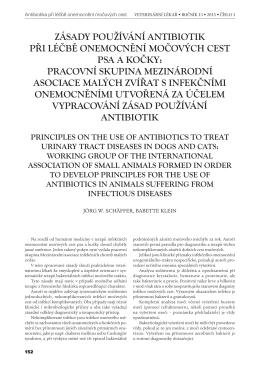 Zásady používání antibiotik při léčbě onemocnění močových cest
