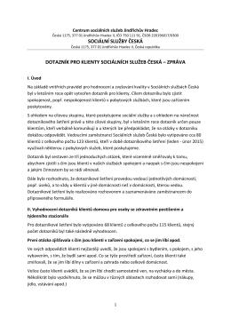 zpráva - sociální služby česká