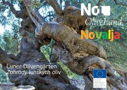 Luner Olivengärten Zahrady lunských oliv