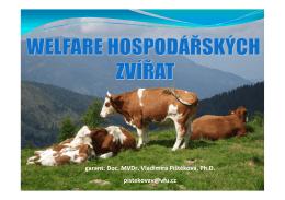 1.Definice a pojmy v oblasti welfare zvířat. Historický vývoj k přístupu