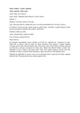 Sekce: Pohyb – Učení v pohybu Název aktivity: Tělo a stín Autor