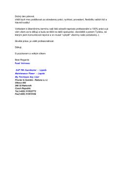 Vyjádření klienta, PDF