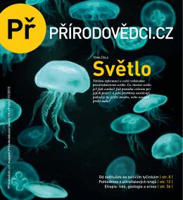 Od světlušek ke svítícím tyčinkám | str. 8