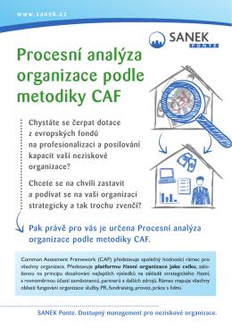 Procesní analýza / audit dle metodiky CAF