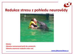 Jitka Ševčíková, MBA - Redukce stresu z pohledu neurovědy