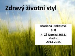 Zdravý životní styl - ZŠ a MŠ Kladno, Norská 2633