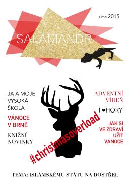Salamandr - Zima 2015 - Gymnázium TG Masaryka
