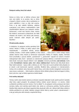 Pokojové rostliny, které čistí vzduch Domov je místo, kam se