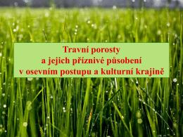 Trávy a jejich příznivé působení v osevním postupu a kulturní krajině