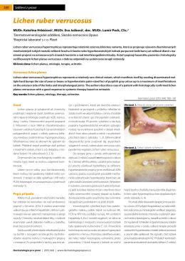 Open - Dermatologie pro praxi