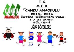 Türkçe Dil Etkinlikleri