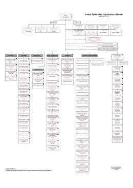 Organizasyon Şeması - Uludağ Üniversitesi