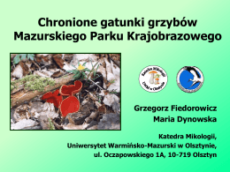 Chronione gatunki grzybów Mazurskiego Parku Krajobrazowego