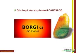 BORGI cs - Caussade Nasiona
