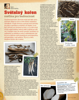 rostlina pro budoucnost (Pravý domácí časopis)