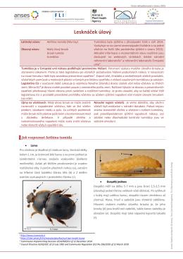 tumidóza - EURL