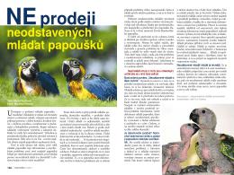 NE prodeji neodstavených mláďat papoušků