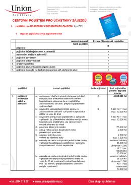 Pojistka Union typ B