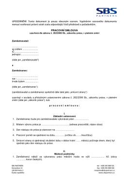 Vzor pracovní smlouvy ()
