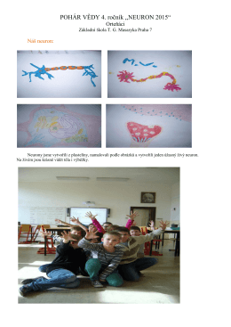 Projekt Neuron 3