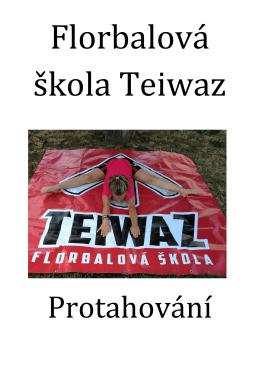 Strečink - Teiwaz Florbal