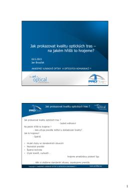 Příspěvek v pdf