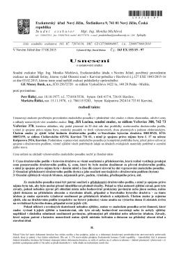 usnesení o ustanovení znalce