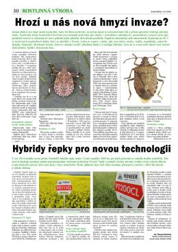 Hybridy řepky pro novou technologii, Zemědělec 22/2015