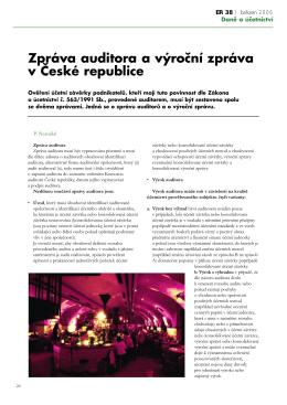 Zpráva auditora a výroční zpráva v České republice
