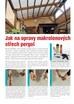 Článek z tisku v PDF
