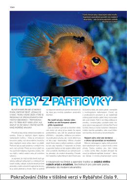 RY09_10_13 partiovka-prelom.indd