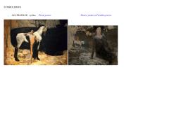 SYMBOLISMUS - JAN PREISLER cyklus Černé jezero Žena a