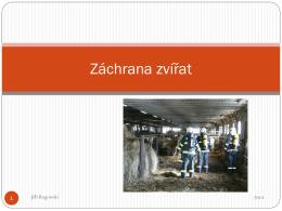 Záchrana zvířat - Portál hasici