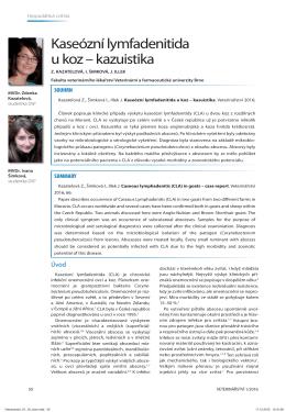 Kaseózní lymfadenitida u koz – kazuistika