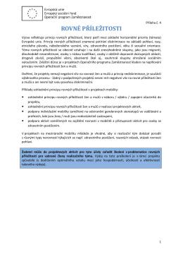 Příloha č. 4 - Rovné příležitosti
