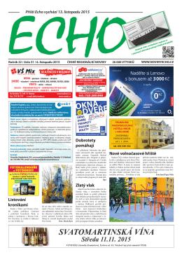 ECHO 31