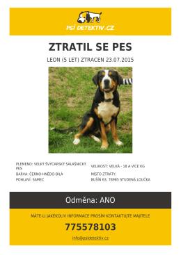 Ztratil se pes LEON plemene Velký švýcarský salašnický