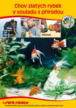 Chov zlatých rybek v souladu s prˇírodou