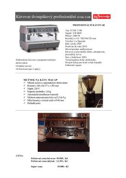 Kávovar dvoupákový profesionální S3 EK 2 GR