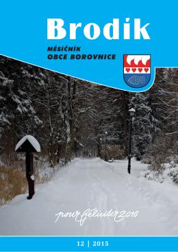 Prosinec - Borovnice