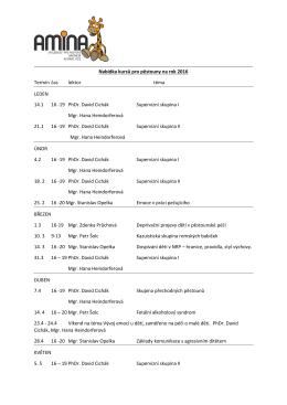 19 PhDr. David Cichák Supervizní skupina I